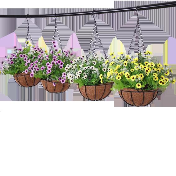 le coin du jardinier les paniers suspendus st quentin mag. Black Bedroom Furniture Sets. Home Design Ideas