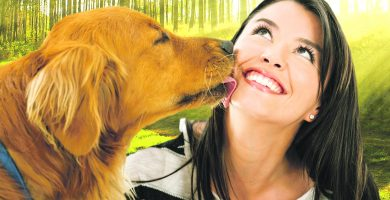 Cute dog kissing a woman - isolated over a white background