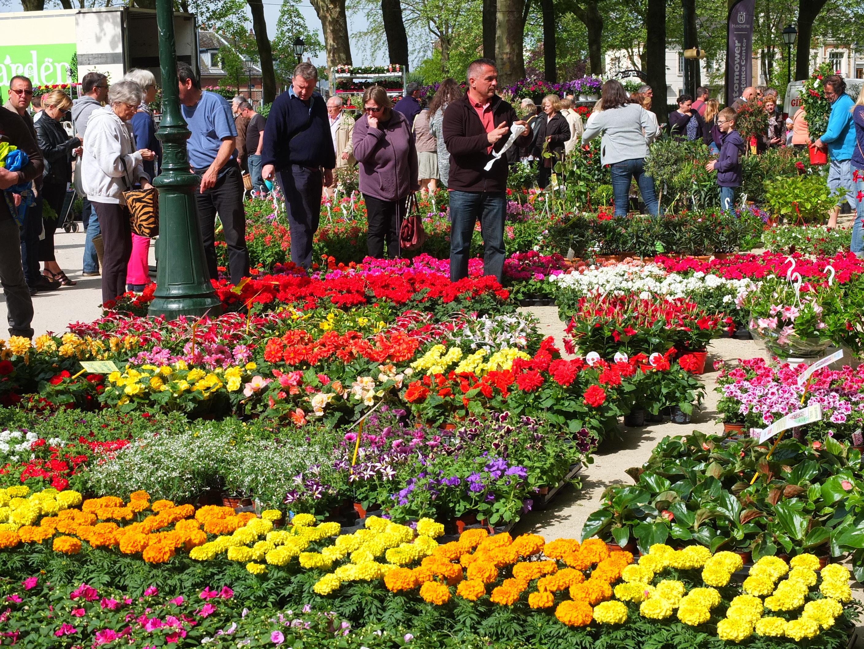 Tous aux champs pour le 34e march aux fleurs st for Place du jardin aux fleurs